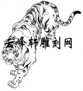 虎2-矢量图-龙精虎猛-49-虎矢量图