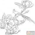 工笔白描牡丹画-花团锦簇-mdbm004-牡丹图案
