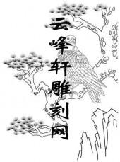 路径鹰-矢量图-浩气横秋-aaab6-鹰刻绘图