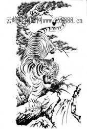 虎第四版-矢量图-猛虎下山-13-电子版虎