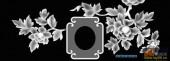 03-花开-001-花鸟雕刻灰度图