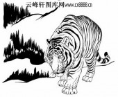虎第五版-矢量图-潜龙伏虎-15-虎路径图