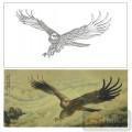 2011设计艺术玻璃刻绘-雄鹰展翅-喷砂玻璃图库