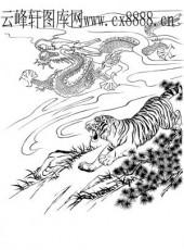 虎第四版-矢量图-龙腾虎跃-7-电子版虎