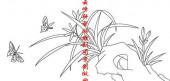梅兰竹菊,白描图,蝴蝶,兰花,mlxj170-梅兰竹菊国画白描