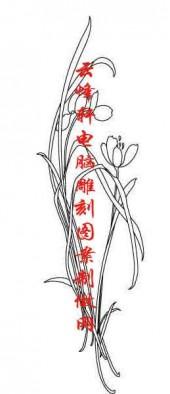 梅兰竹菊-白描图-兰花草-mlxj016-梅兰竹菊线描图