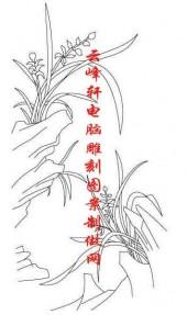 梅兰竹菊-白描图-兰草-mlxj014-梅兰竹菊全图