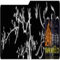梅花 鸟-雕刻灰度图