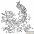 凤-矢量图-凤凰牡丹-huangf007-中国传统凤图