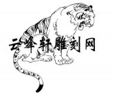 虎2-矢量图-卧虎藏龙-71-虎路径图