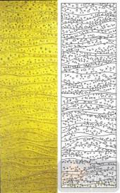 05肌理雕刻系列样图-波浪线-00005-雕刻玻璃