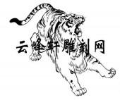 虎2-矢量图-人中龙虎-55-虎全图