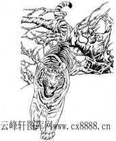 虎第四版-矢量图-龙精虎猛-21-虎雕刻图案