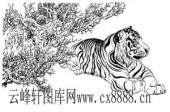虎第四版-矢量图-虎尾春冰-11-电子版虎