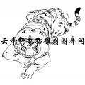 虎1-白描图-虎卧龙跳-7-老虎雕刻图案