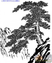 2010.4.3迎客松-白描图-古松迎客-yks022-迎客松线描图