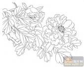 工笔白描牡丹画-矢量图-2露-牡丹雕刻图