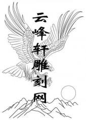 路径鹰-矢量图-大展宏图-aaaab-鹰刻绘图