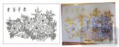 2011设计艺术玻璃刻绘-华容富贵-艺术玻璃
