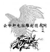 名家画鹰-矢量图-3丹叶吟风-路径鹰图片