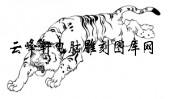 虎1-矢量图-猛虎出山-8-虎矢量图