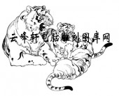 虎1-矢量图-猛虎深山-34-虎路径图