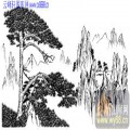2010.4.3迎客松-白描图-迎客松-yks009-迎客松白描图
