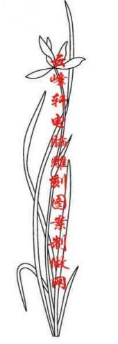 梅兰竹菊-白描图-兰花-mlxj033-梅兰竹菊雕刻图片