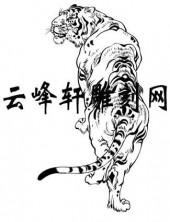虎2-矢量图-云龙风虎-57-电子版虎
