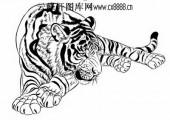 虎第五版-矢量图-燕颔虎颈-19-路径矢量图