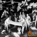 八仙过海 寿 树 仙鹤-灰度图库素材