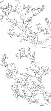 竖板25,玉兰花