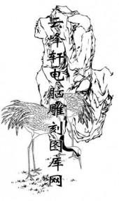 白描仙鹤-矢量图-鹤骨松姿-2-仙鹤雕刻图片