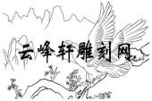 路径鹰-矢量图-雄鹰翱翔-aaaa5-路径鹰图片