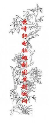 梅兰竹菊-白描图-菊花-mlxj059-梅兰竹菊线描图