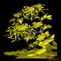 菊花鸟椅靠背板-浮雕雕刻图案