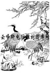白描仙鹤-矢量图-仙鹤小溪-4-仙鹤雕刻图片