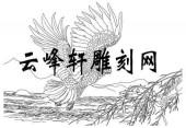 路径鹰-矢量图-羽翼生风-aaaa4-矢量鹰