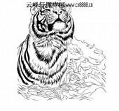 虎第五版-矢量图-龙精虎猛-18-路径矢量图