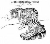 虎第五版-矢量图-龙威虎震-32-虎全图