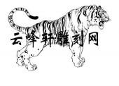 虎2-矢量图-威虎-84-虎国画矢量