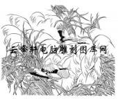 白描仙鹤-矢量图-龟鹤之年-32-仙鹤矢量图