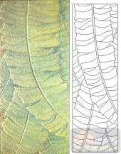05肌理雕刻系列样图-叶脉-00112-艺术玻璃