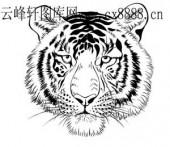虎第四版-矢量图-虎头虎脑-4-虎全图