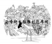 白描仙鹤-矢量图-荷塘仙鹤-7-仙鹤国画矢量