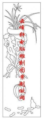 梅兰竹菊-白描图-兰草 南瓜-mlxj007-梅兰竹菊白描图