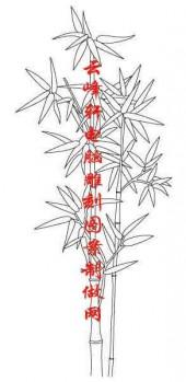 梅兰竹菊-白描图-竹子-mlxj015-梅兰竹菊国画白描