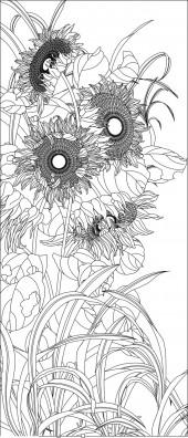 竖板63,向日葵