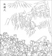 方版185,郁金香