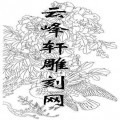 工笔牡丹-矢量图-3双鸽-中国传统牡丹图